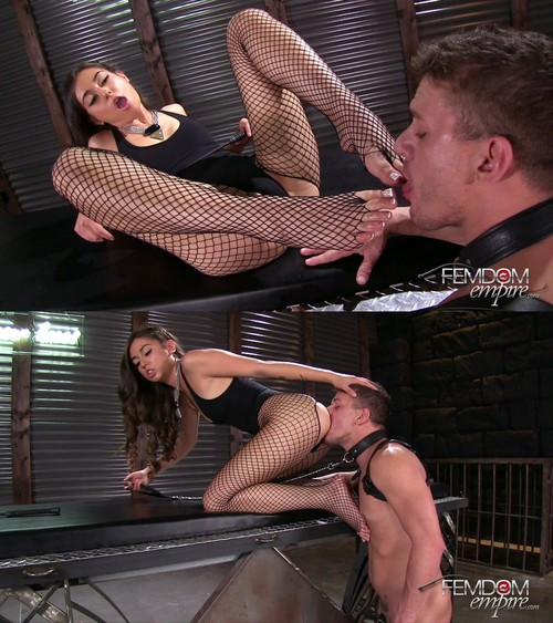 Shane Blair - Pampered for pleasure [FullHD 1080p] (FemdomEmpire)