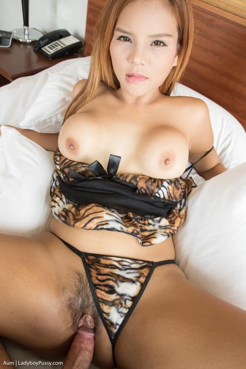 Aum - Tiger Babydoll Creampie [HD 720p] (LadyBoyPussy)