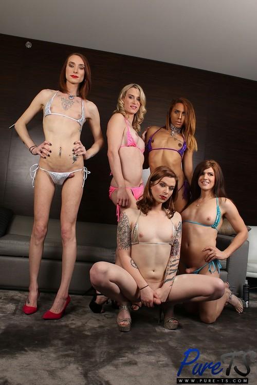 Pure-TS: Bailey Love, Joss Amor, Natalie Anderson, Nikki Vicious, Taryn Elizabeth - Massive Bareback Orgy (HD/2017)