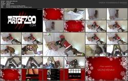http://ist3-4.filesor.com/pimpandhost.com/1/5/6/4/156475/4/8/I/B/48IBs/Santas_Little_Helper.mp4_s.jpg