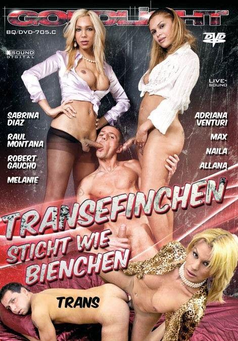 Transefinchen Sticht Wie Bienchen (2012)