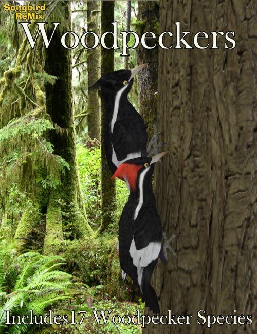 SBRM Woodpeckers