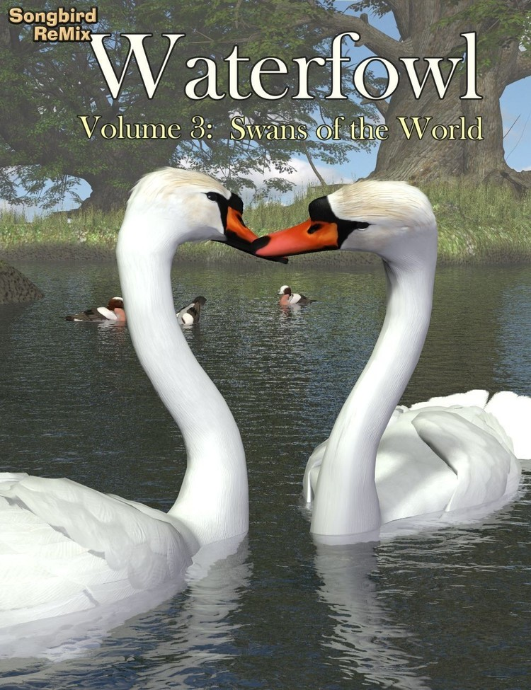 Waterfowl Vol 3 - Swans of the World