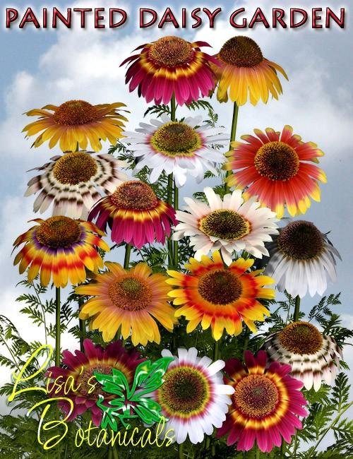 Lisa's Botanicals - Painted Daisy