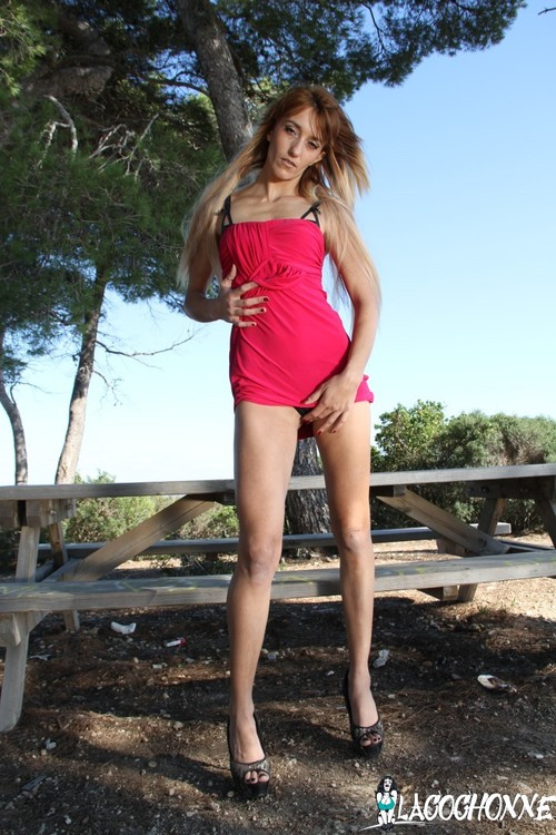Sheina Axe - Dirty French outdoor sex with anal-crazed amateur blondie / 12.12.2016