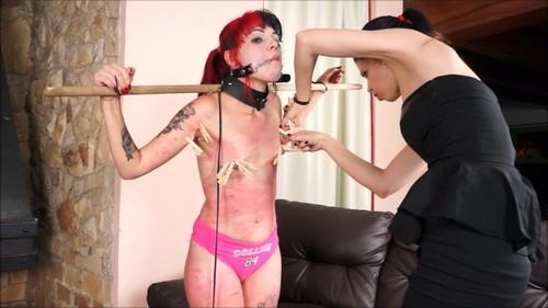 Slavegirl Cary, Mistress Karina - Carys Cruel Training - 2017