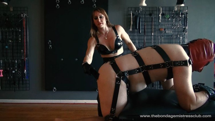Big black cock in pussy