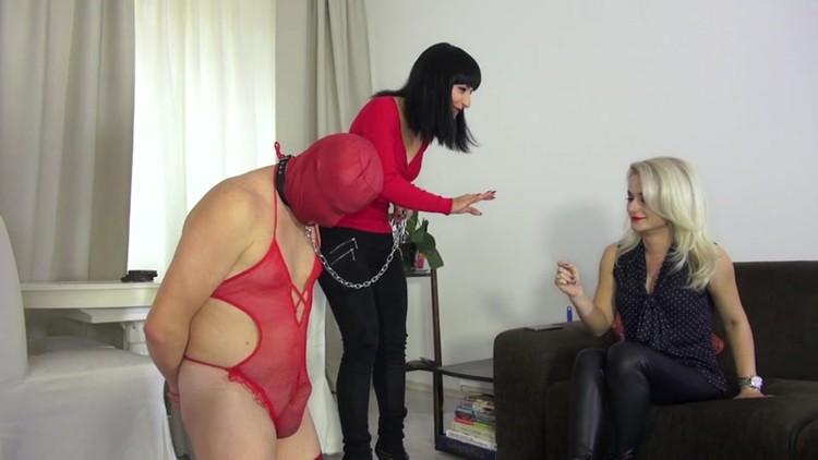 Girl takes multiple cum shots